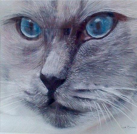 Faites réaliser un tableau de votre chat